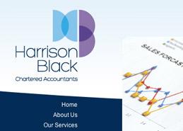 Accountant Website Design Portfolio Example Thumbnail