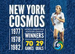Soccer Website Design Portfolio Example Thumbnail
